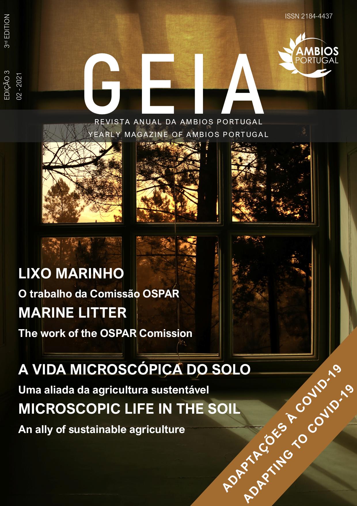 GEIA Revista Anual 2021